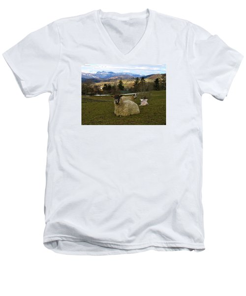 Men's V-Neck T-Shirt featuring the photograph Hill Sheep by RKAB Works