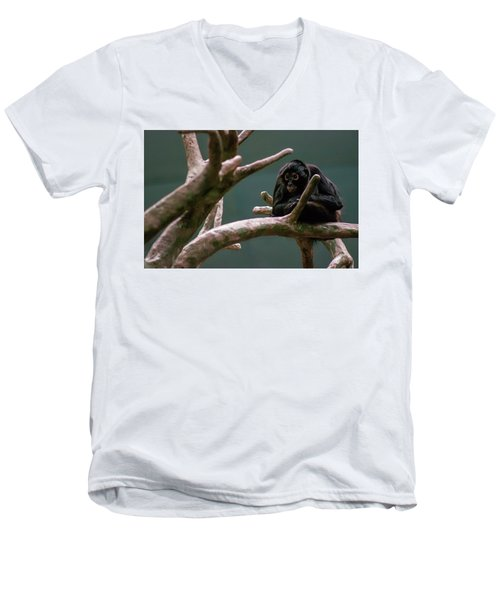 Home On The Limb Men's V-Neck T-Shirt