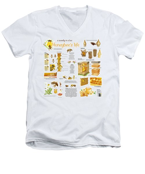 Honey Bees Infographic Men's V-Neck T-Shirt by Gina Dsgn