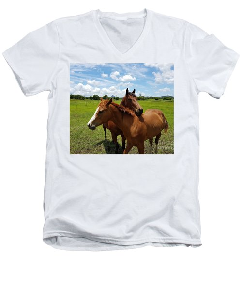 Horse Cuddles Men's V-Neck T-Shirt