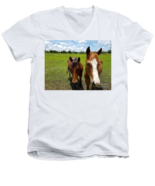Horse Friendship Men's V-Neck T-Shirt