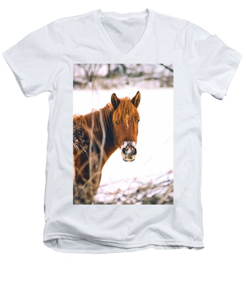 Horse In Winter Men's V-Neck T-Shirt by Steve Karol
