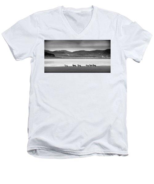 Horses, Iceland Men's V-Neck T-Shirt
