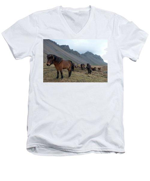 Men's V-Neck T-Shirt featuring the photograph Horses Near Vestrahorn Mountain, Iceland by Dubi Roman