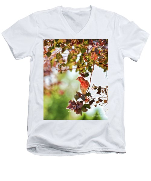 Men's V-Neck T-Shirt featuring the photograph House Finch Hanging Around by Kerri Farley