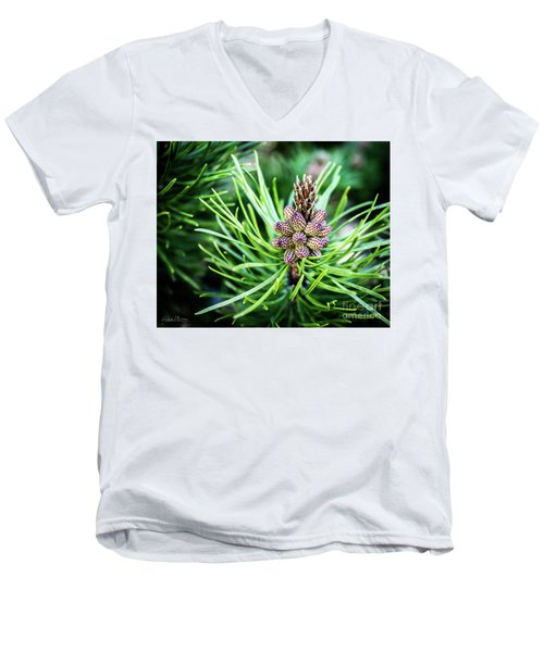 Humble Beginnings Men's V-Neck T-Shirt
