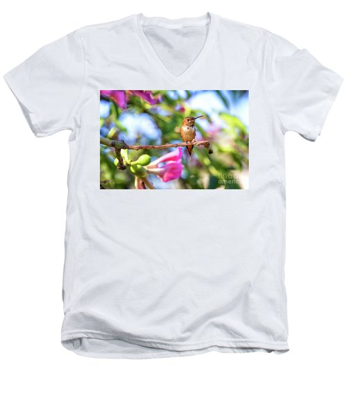 Humming Bird Pink Flowers Men's V-Neck T-Shirt by Stephanie Hayes