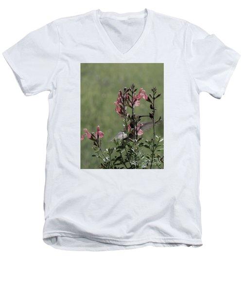Hummingbird 1 Men's V-Neck T-Shirt