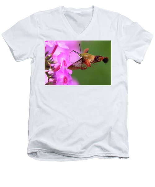 Hummingbird Moth Feeding 2 Men's V-Neck T-Shirt