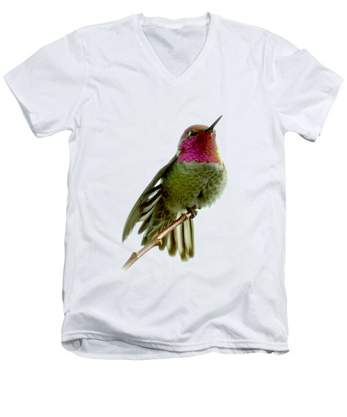 Hummingbird Portrait T1 Men's V-Neck T-Shirt