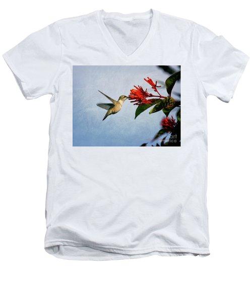 Hummingbird Red Flowers Men's V-Neck T-Shirt