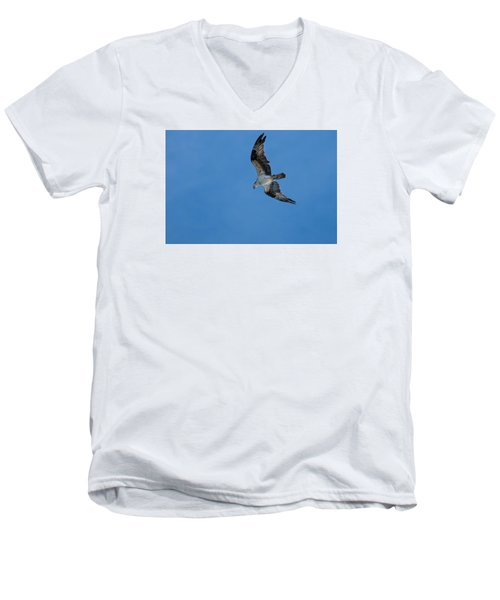 Hunting Osprey Men's V-Neck T-Shirt