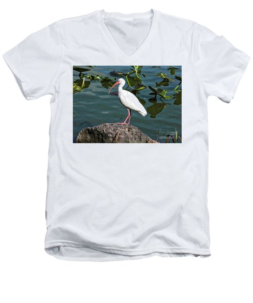 Ibis Rock Men's V-Neck T-Shirt by Carol Groenen