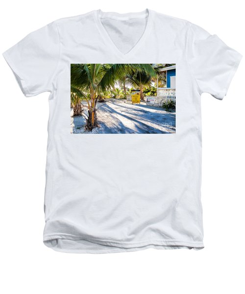 Ice Beans Men's V-Neck T-Shirt by Lawrence Burry