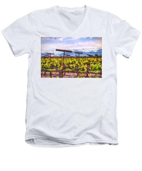 In The Vineyard Men's V-Neck T-Shirt