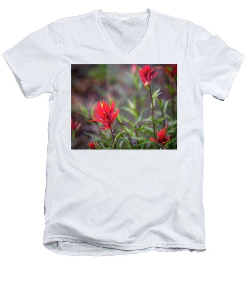 Indian Hawthorne Men's V-Neck T-Shirt