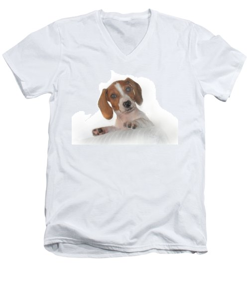 Men's V-Neck T-Shirt featuring the photograph Inquisitive Dachshund by David and Carol Kelly