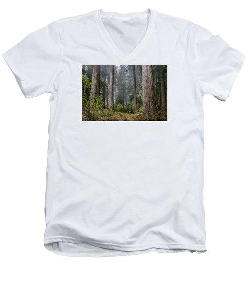Into The Redwood Forest Men's V-Neck T-Shirt