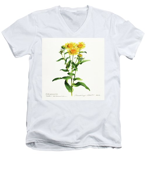 Inula Men's V-Neck T-Shirt