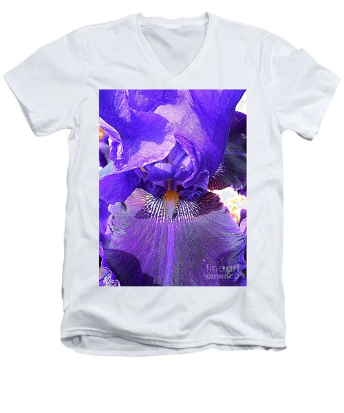 Iris Garden 16 Men's V-Neck T-Shirt