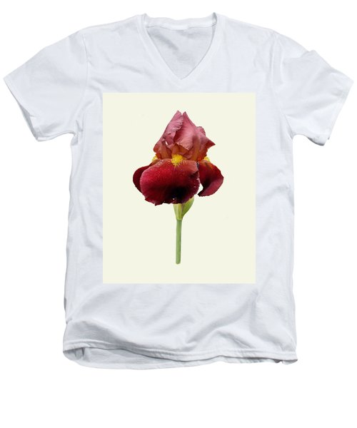 Men's V-Neck T-Shirt featuring the photograph Iris Vitafire Cream Background by Paul Gulliver