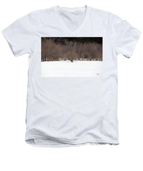 Isolated Men's V-Neck T-Shirt