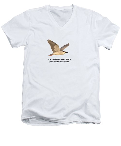 Isolated Black-crowned Night Heron 2017-6 Men's V-Neck T-Shirt by Thomas Young