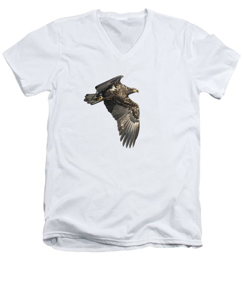 Men's V-Neck T-Shirt featuring the photograph Isolated Eagle 2017-2 by Thomas Young