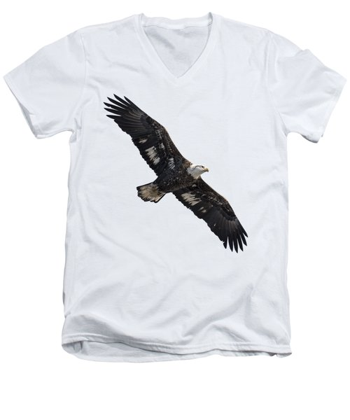 Men's V-Neck T-Shirt featuring the photograph Isolated Juvenile American Bald Eagle 2016-1 by Thomas Young