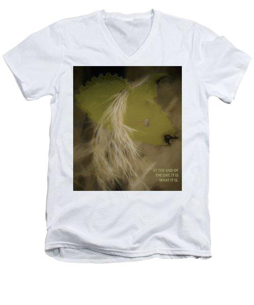 It Is What It Is Men's V-Neck T-Shirt