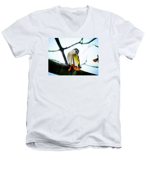 Men's V-Neck T-Shirt featuring the photograph Just Curious by Zinvolle Art