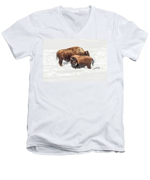 Juvenile Bison With Adult Bison Men's V-Neck T-Shirt by Sue Smith