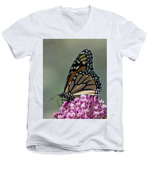King Of The Butterflies Men's V-Neck T-Shirt