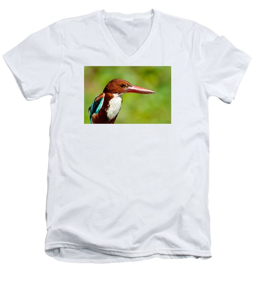 Kingfisher_portrait Men's V-Neck T-Shirt