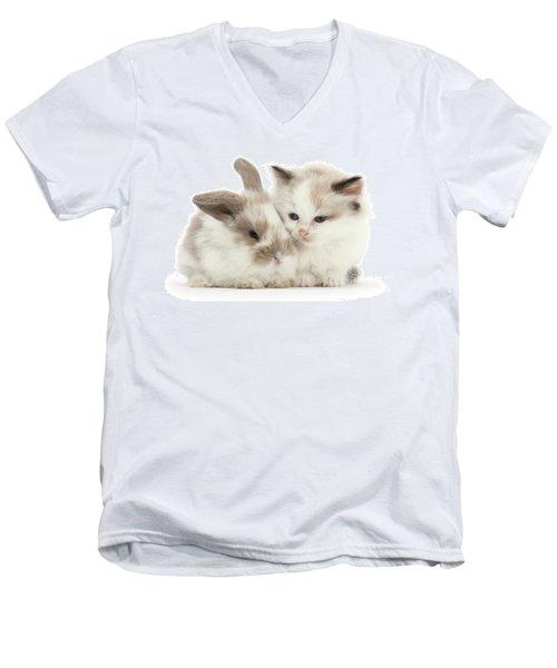 Kitten Cute Men's V-Neck T-Shirt