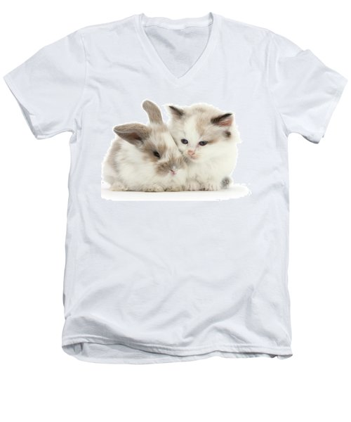 Kitten Cute Men's V-Neck T-Shirt