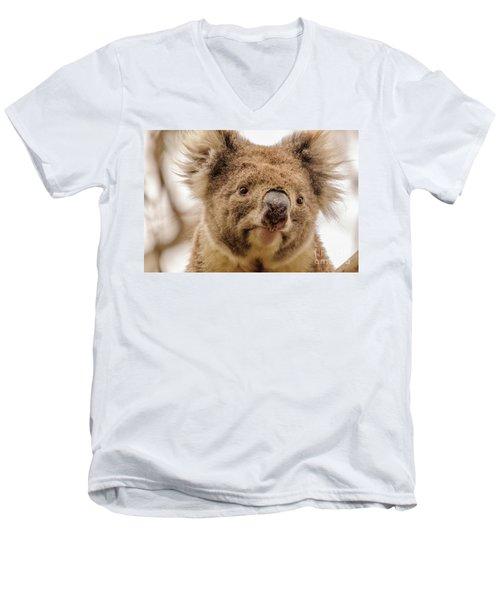 Koala 4 Men's V-Neck T-Shirt by Werner Padarin