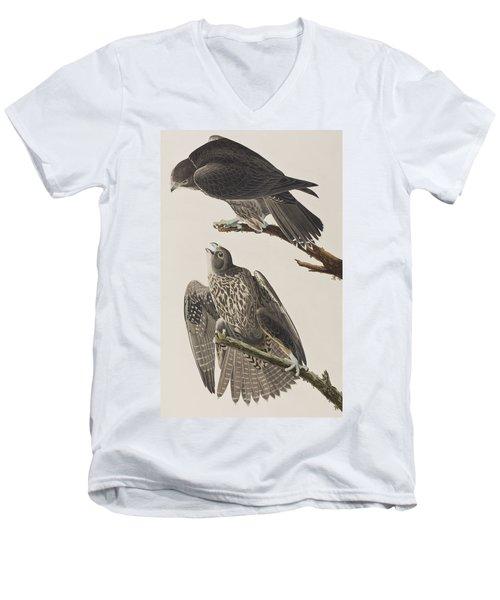 Labrador Falcon Men's V-Neck T-Shirt by John James Audubon
