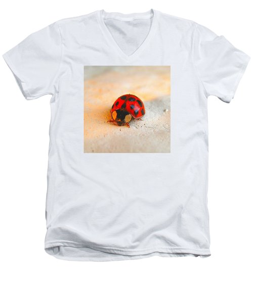 Men's V-Neck T-Shirt featuring the photograph Lady Bug 2 by John King
