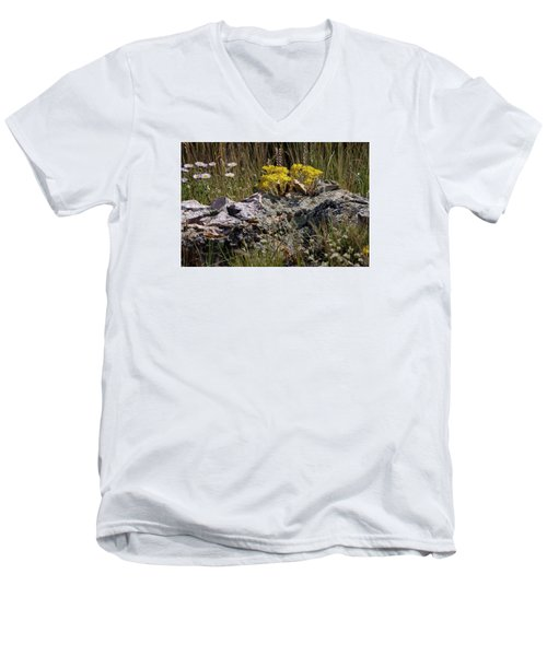 Lanceleaf Stonecrop Sedum 1 Men's V-Neck T-Shirt