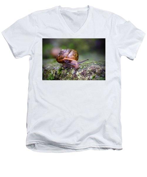 Land Snail II Men's V-Neck T-Shirt