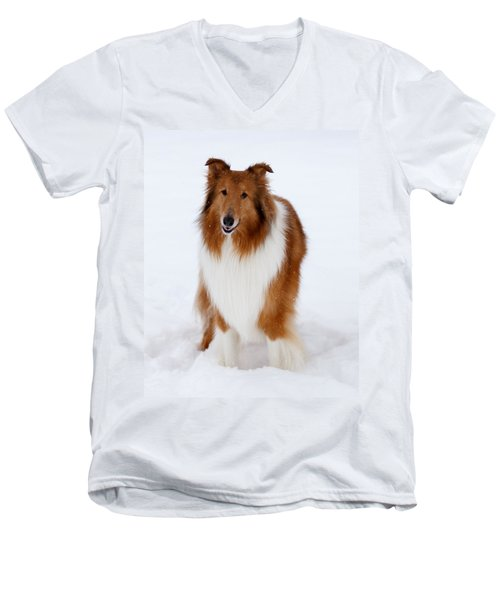Lassie Enjoying The Snow Men's V-Neck T-Shirt by Shane Holsclaw