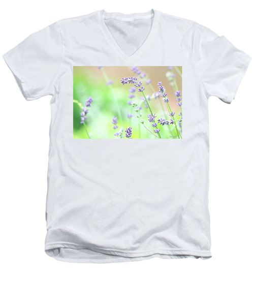 Lavender Garden Men's V-Neck T-Shirt