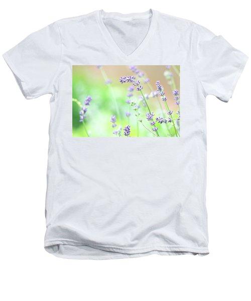 Lavender Garden Men's V-Neck T-Shirt