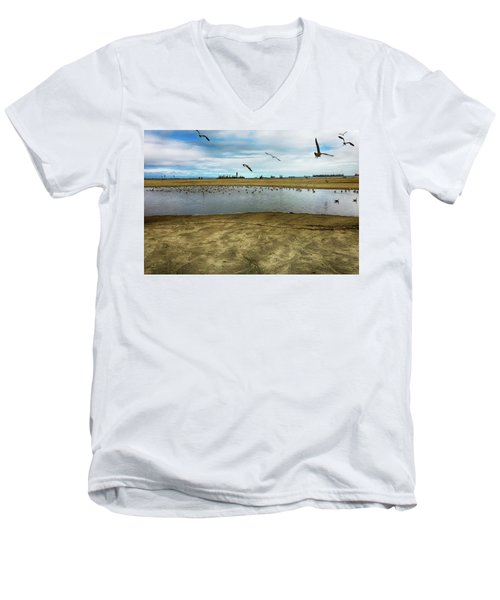 Lb Seagull Pond Men's V-Neck T-Shirt by Joseph Hollingsworth