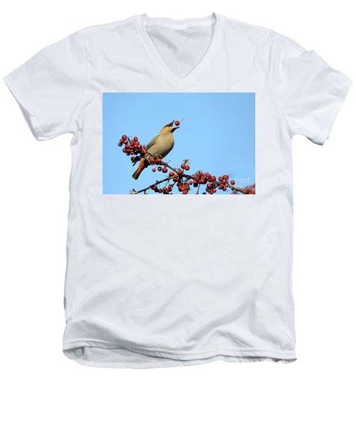 Le Gongleur Men's V-Neck T-Shirt