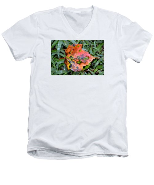 Men's V-Neck T-Shirt featuring the photograph Leaf It Be by Lew Davis