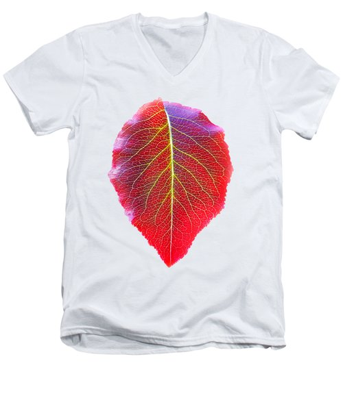 Leaf Of Autumn Men's V-Neck T-Shirt