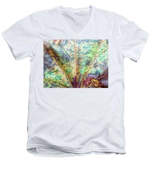 Leaf Terrain Men's V-Neck T-Shirt by Todd Breitling