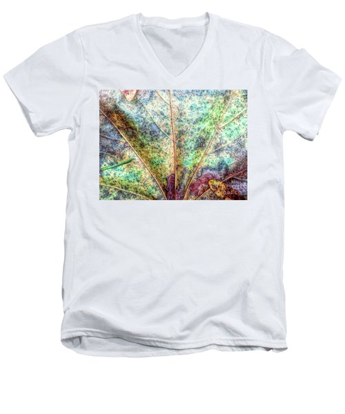 Leaf Terrain Men's V-Neck T-Shirt